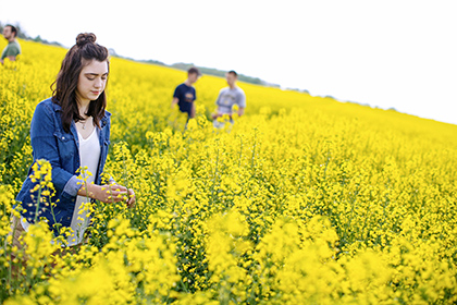 Agriculture students gain hands-on experience in a field of canola